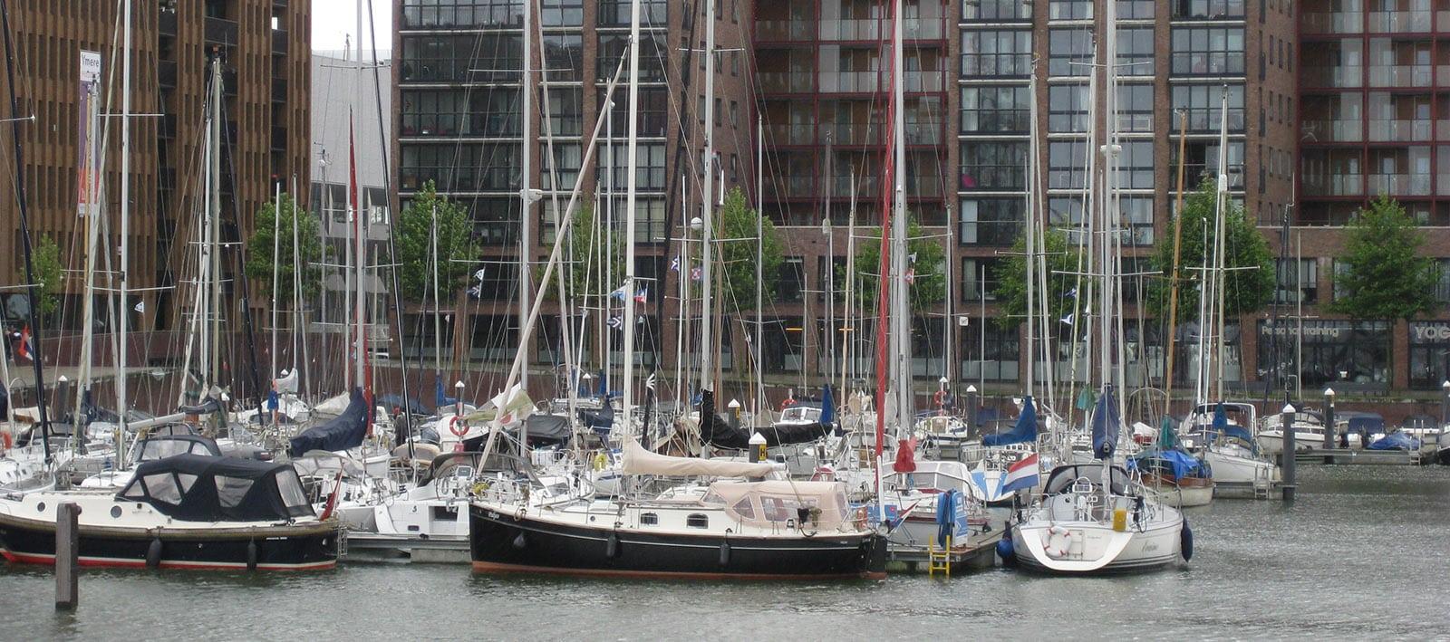 Amsterdam Ijburg Spinnen bestrijden